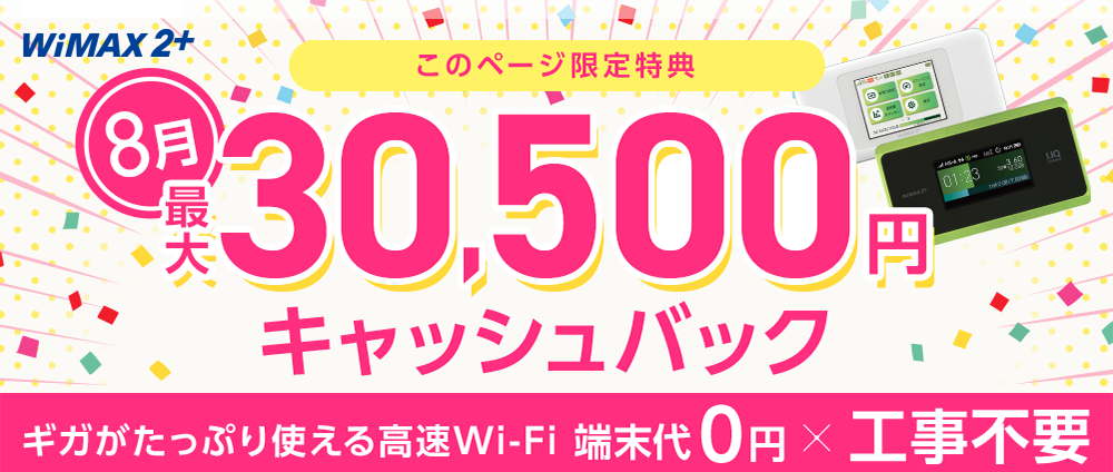 WiMAX202008